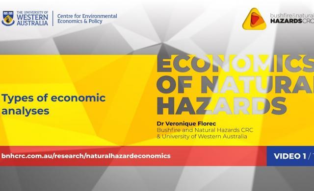 Types of economic analyses - video 1/10