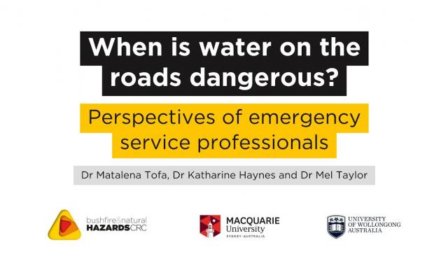 When is water on the roads dangerous? – Perspectives of emergency service professionals