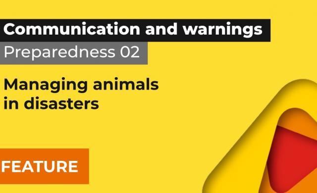 Preparedness 2: Managing animals in disasters