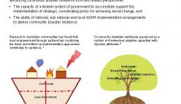 Growing community disaster resilience: Are arrangements for implementing the national strategy for disaster resilience fit-for-purpose?