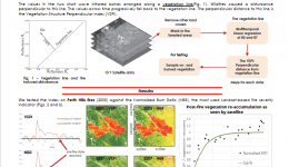 Satellite monitoring of fire impact and recovery