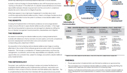 Implementing disaster resilience policy: making it happen in a federal system