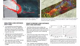 Long-distance spot-fires: An empirical analysis