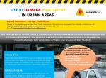 Flood damage assessment in urban areas