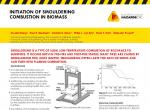 Initiation of Smouldering Combustion in Biomass