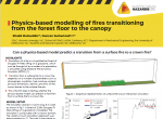 Physics-based modelling of fires transitioning from the forest floor to the canopy